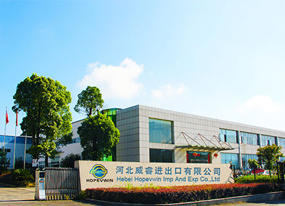 About Hebei Hopevwin Imp and Exp Co.,Ltd.